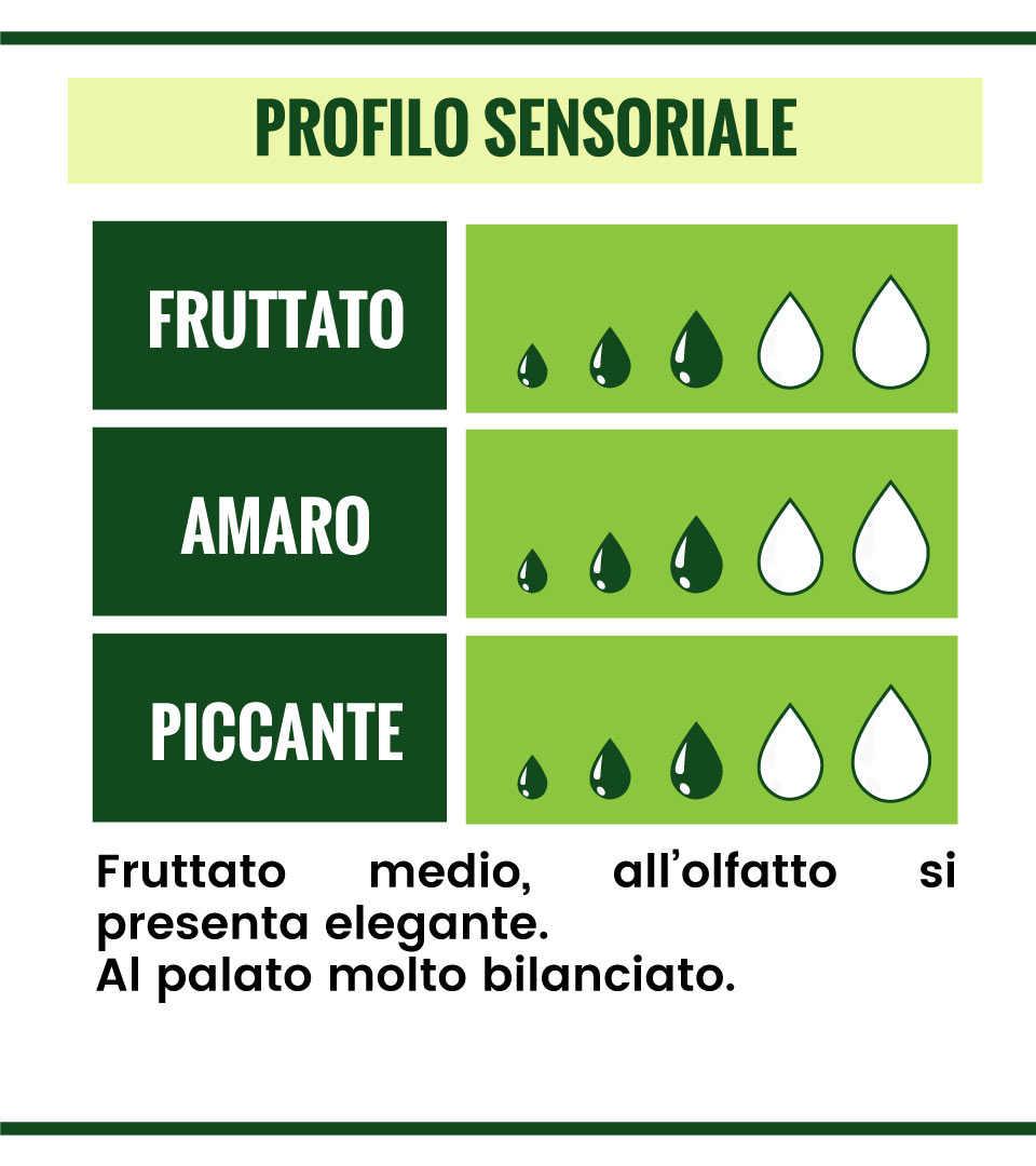 olio-selezione-n6-profilo-sensoriale.jpg