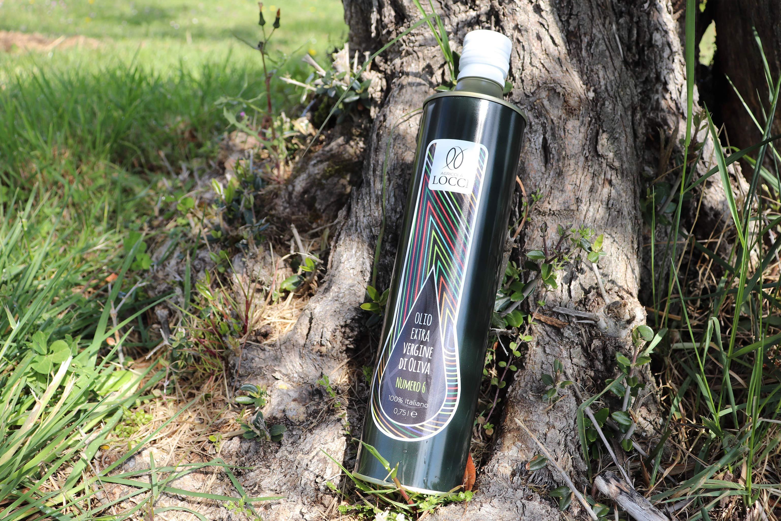 Extra Virgin Olive Oil Tenute Santa Chiara Dop Umbria